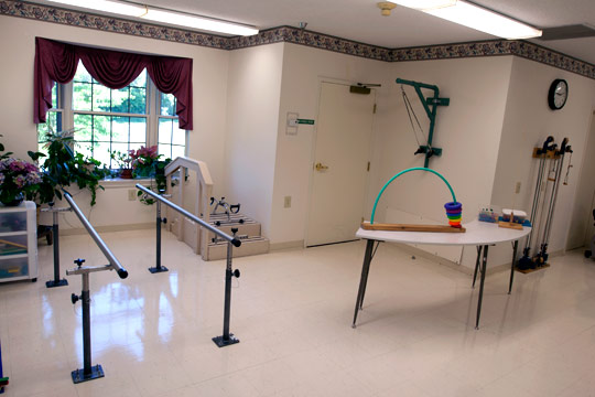 The Physical Therapy Room
